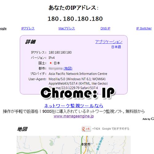 Chrome プラグイン IP